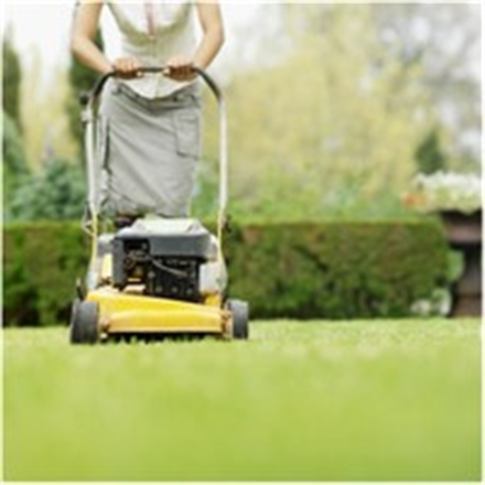 Great Commercial Landscaping Business with Funding
